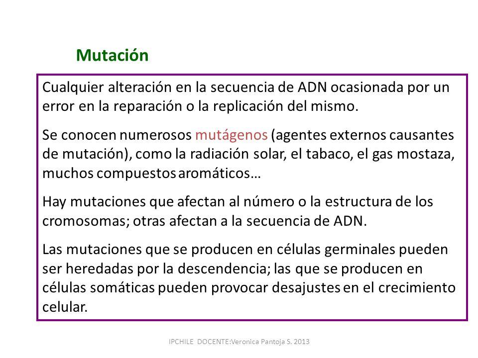 Mutación Cualquier alteración en la secuencia de ADN ocasionada por un error en la reparación o la replicación del mismo. Se conocen numerosos mutágen