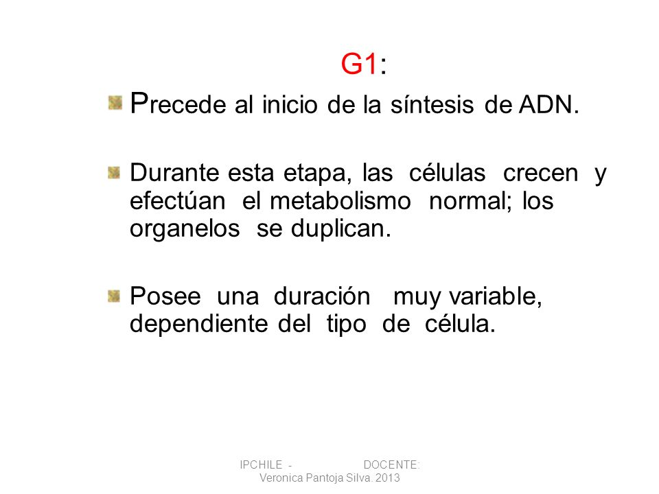 G1: P recede al inicio de la síntesis de ADN. Durante esta etapa, las células crecen y efectúan el metabolismo normal; los organelos se duplican. Pose