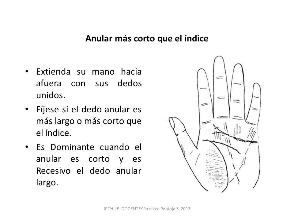 Anular más corto que el índice Extienda su mano hacia afuera con sus dedos unidos. Fíjese si el dedo anular es más largo o más corto que el índice. Es