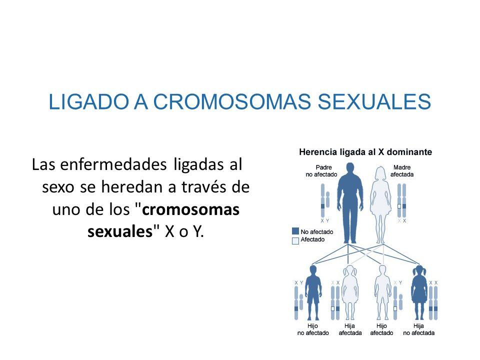 Las enfermedades ligadas al sexo se heredan a través de uno de los
