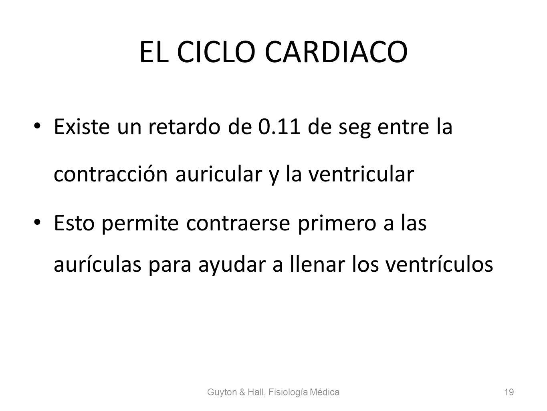 EL CICLO CARDIACO Existe un retardo de 0.11 de seg entre la contracción auricular y la ventricular Esto permite contraerse primero a las aurículas par