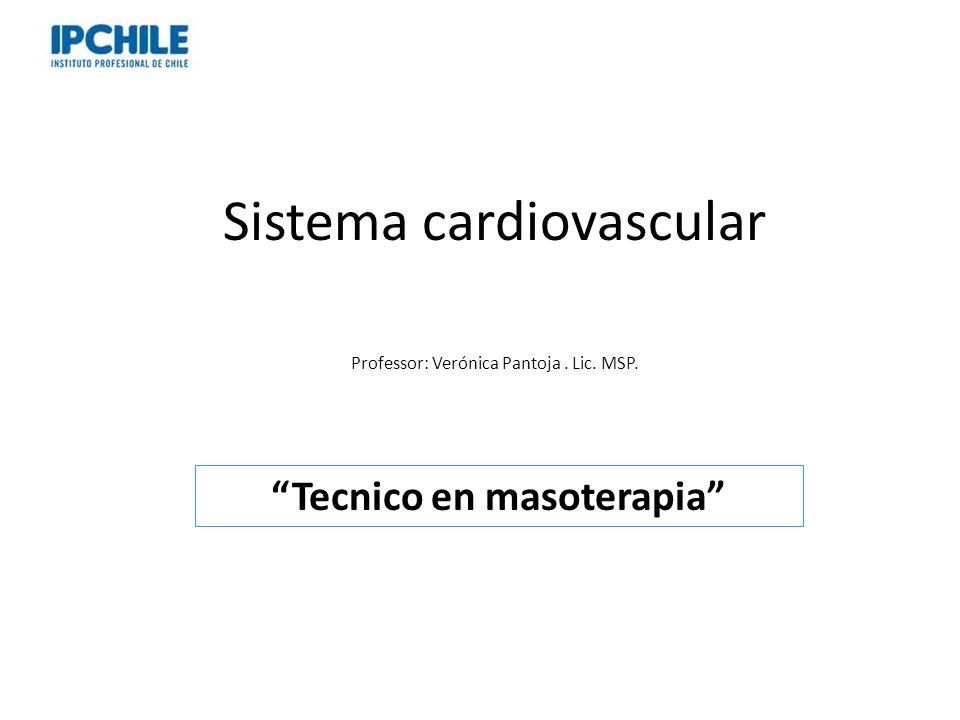 Sistema cardiovascular Professor: Verónica Pantoja. Lic. MSP. Tecnico en masoterapia
