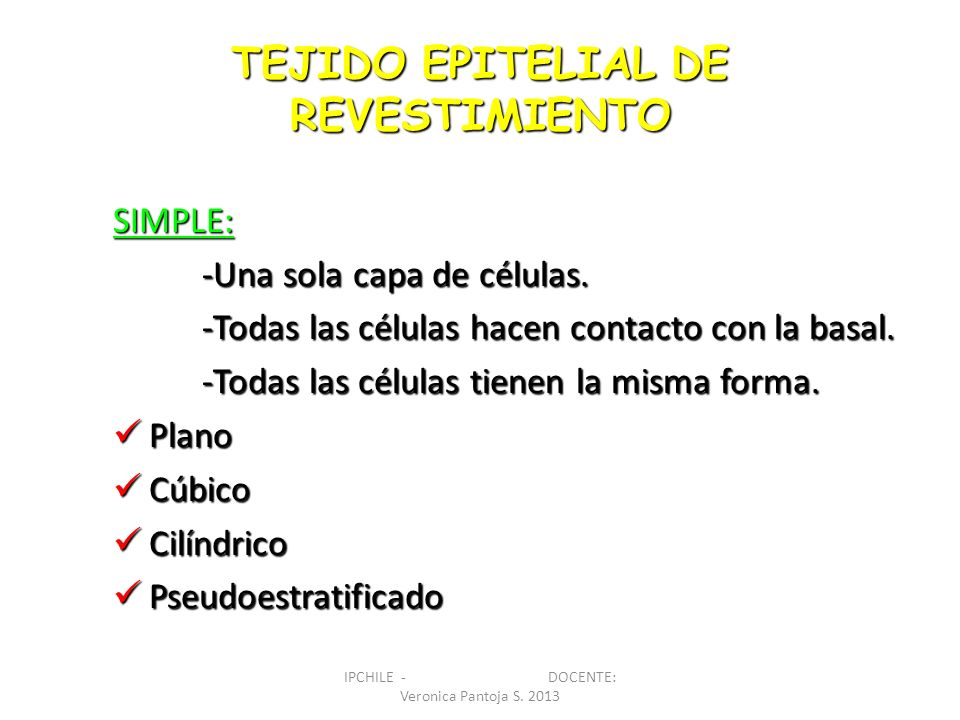CELULAS PLANAS: ANCHO Y PROFUNDIDAD > ALTURA EPITELIO PLANO SIMPLE IPCHILE - DOCENTE: Veronica Pantoja S.