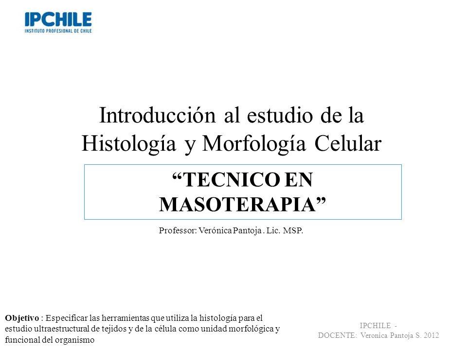 Introducción al estudio de la Histología y Morfología Celular Professor: Verónica Pantoja. Lic. MSP. TECNICO EN MASOTERAPIA IPCHILE - DOCENTE: Veronic