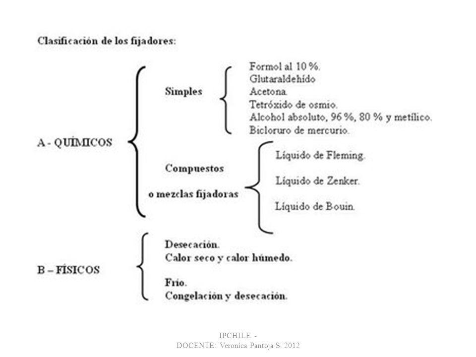 IPCHILE - DOCENTE: Veronica Pantoja S. 2012