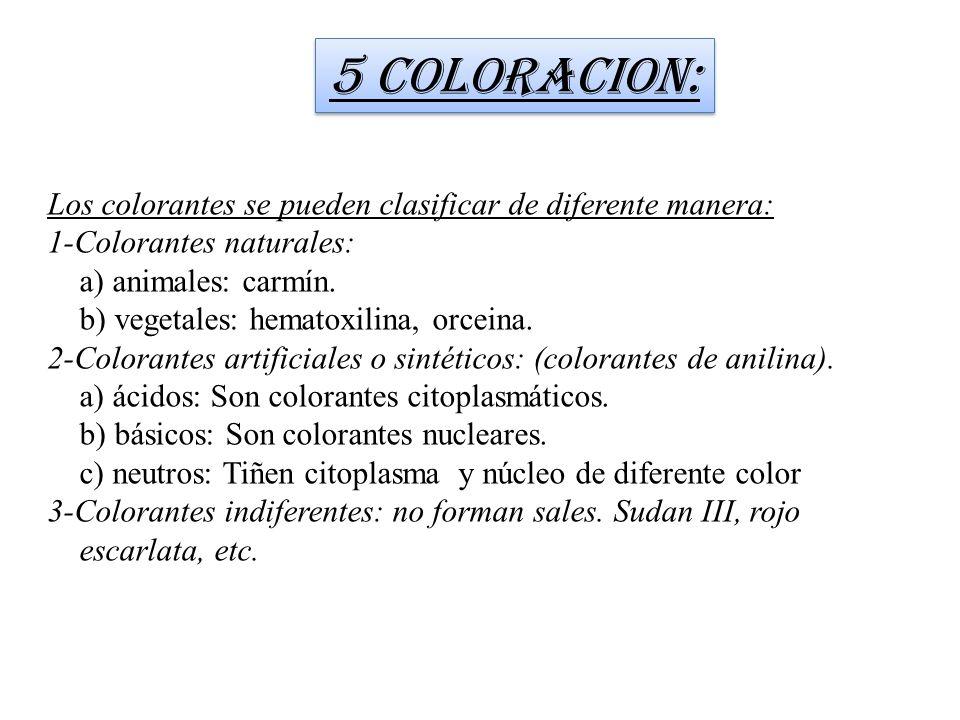 Los colorantes se pueden clasificar de diferente manera: 1-Colorantes naturales: a) animales: carmín. b) vegetales: hematoxilina, orceina. 2-Colorante