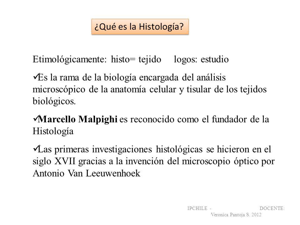Etimológicamente: histo= tejido logos: estudio Es la rama de la biología encargada del análisis microscópico de la anatomía celular y tisular de los t