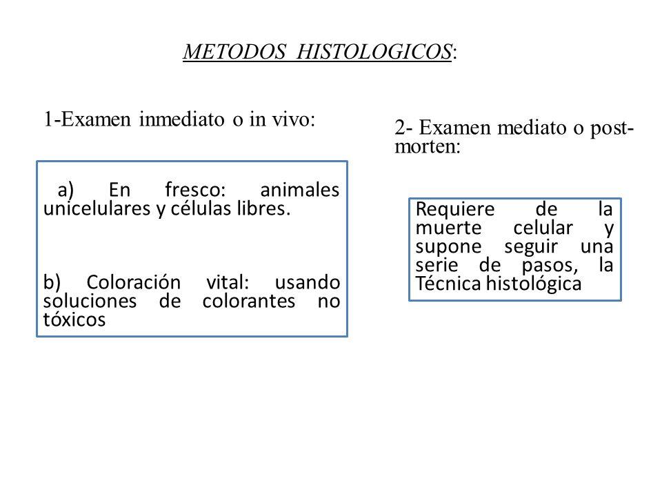 METODOS HISTOLOGICOS: a) En fresco: animales unicelulares y células libres. b) Coloración vital: usando soluciones de colorantes no tóxicos Requiere d