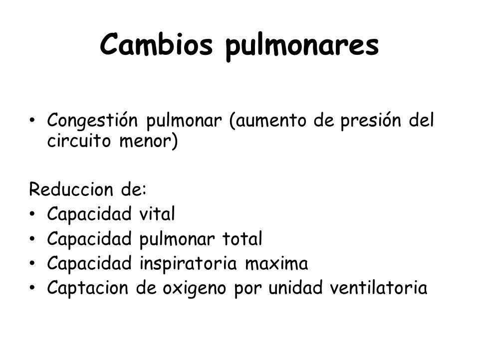 D-MUERTE SUBITA CARDIACA Pérdida abrupta de la función cardiaca, conduciendo en la mayoría de los casos al deceso del paciente.