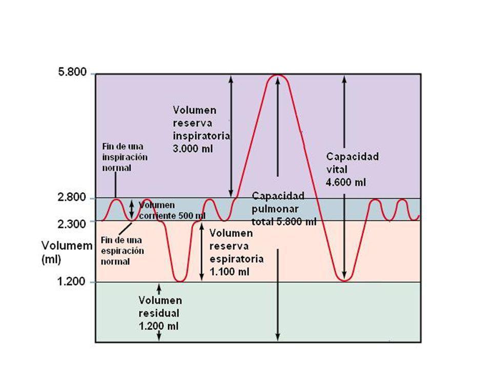 Auscultación Agrandamiento auricular izq.