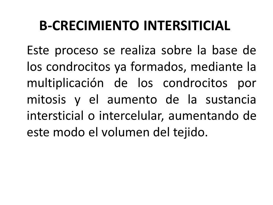 B-CRECIMIENTO INTERSITICIAL Este proceso se realiza sobre la base de los condrocitos ya formados, mediante la multiplicación de los condrocitos por mitosis y el aumento de la sustancia intersticial o intercelular, aumentando de este modo el volumen del tejido.