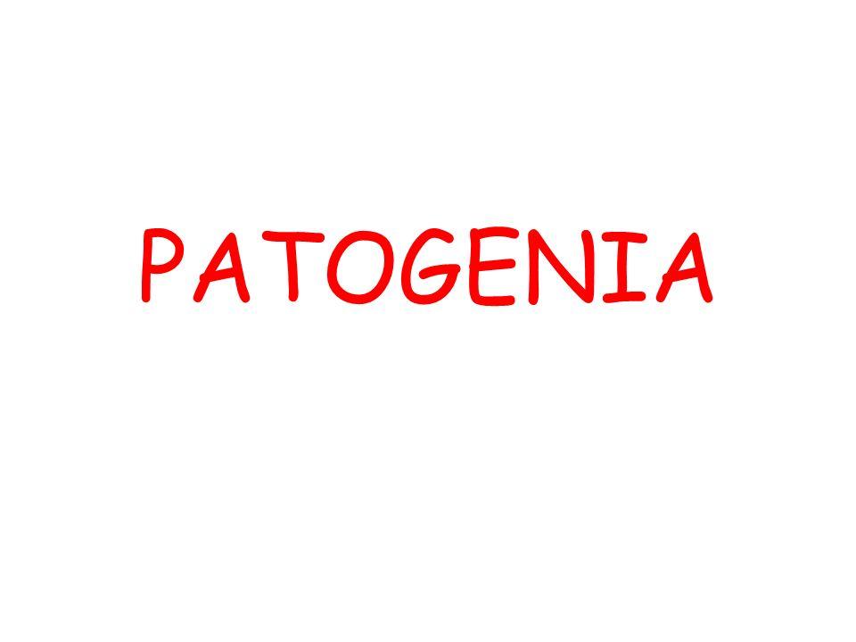 Patogenia 2 La patogenia o nosogenia es la secuencia de sucesos celulares y tisulares que tienen lugar desde el momento del contacto inicial con un agente etiológico hasta la expresión final de la enfermedad.