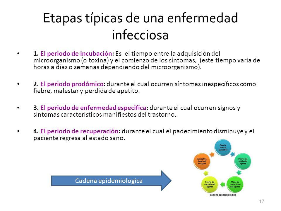 17 Etapas típicas de una enfermedad infecciosa 1. El periodo de incubación: Es el tiempo entre la adquisición del microorganismo (o toxina) y el comie