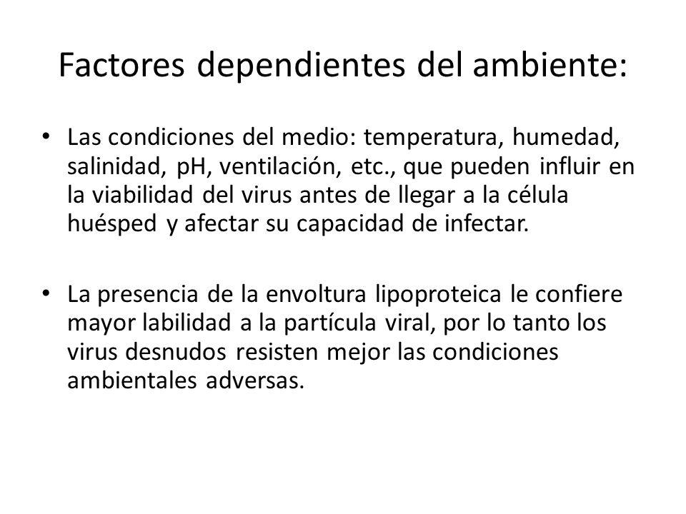 Factores dependientes del ambiente: Las condiciones del medio: temperatura, humedad, salinidad, pH, ventilación, etc., que pueden influir en la viabil