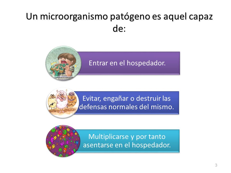 Un microorganismo patógeno es aquel capaz de Un microorganismo patógeno es aquel capaz de: 3 Entrar en el hospedador. Evitar, engañar o destruir las d