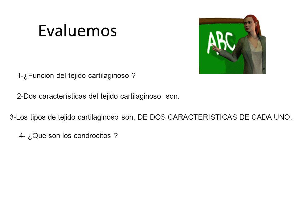 Evaluemos 1-¿Función del tejido cartilaginoso ? 2-Dos características del tejido cartilaginoso son: 3-Los tipos de tejido cartilaginoso son, DE DOS CA