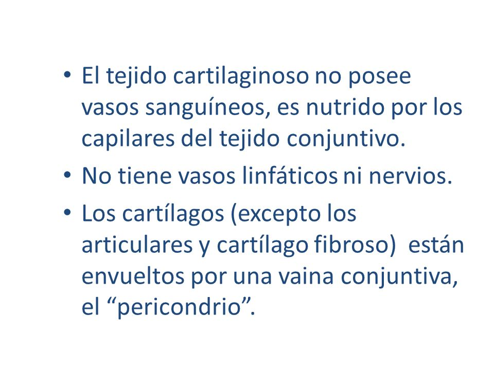 El tejido cartilaginoso no posee vasos sanguíneos, es nutrido por los capilares del tejido conjuntivo. No tiene vasos linfáticos ni nervios. Los cartí