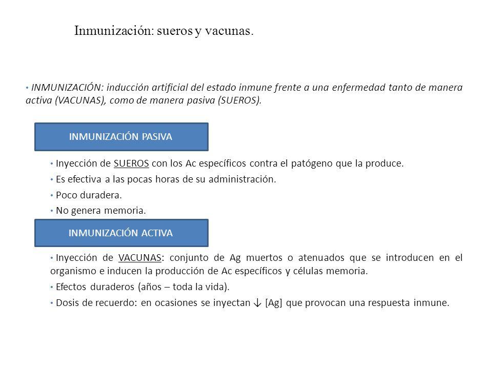 Inmunización: sueros y vacunas. INMUNIZACIÓN: inducción artificial del estado inmune frente a una enfermedad tanto de manera activa (VACUNAS), como de