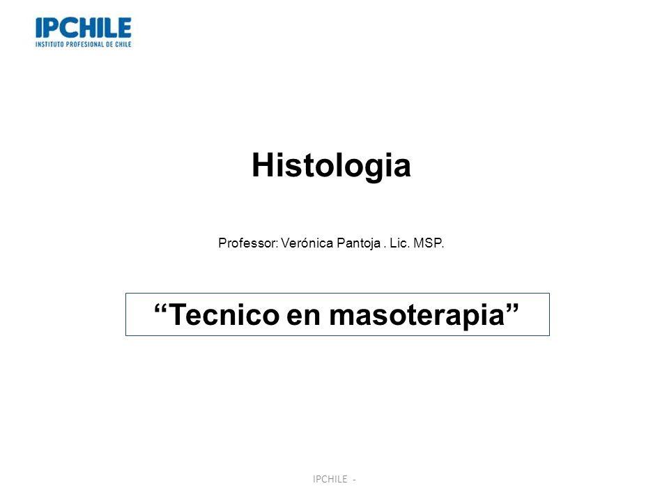 Histologia Professor: Verónica Pantoja. Lic. MSP. Tecnico en masoterapia IPCHILE -