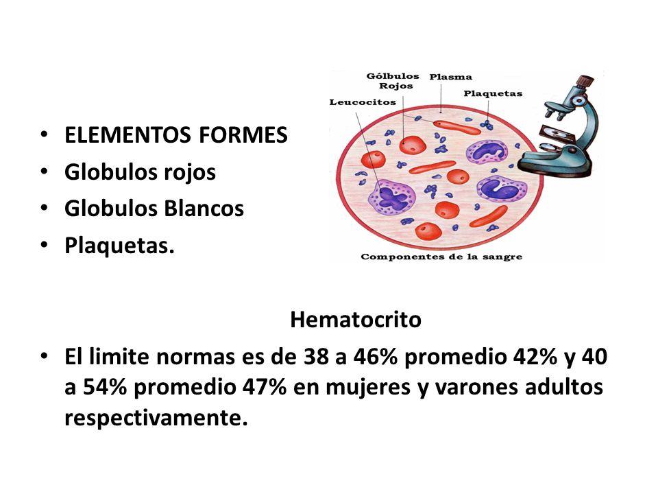 ELEMENTOS FORMES Globulos rojos Globulos Blancos Plaquetas. Hematocrito El limite normas es de 38 a 46% promedio 42% y 40 a 54% promedio 47% en mujere