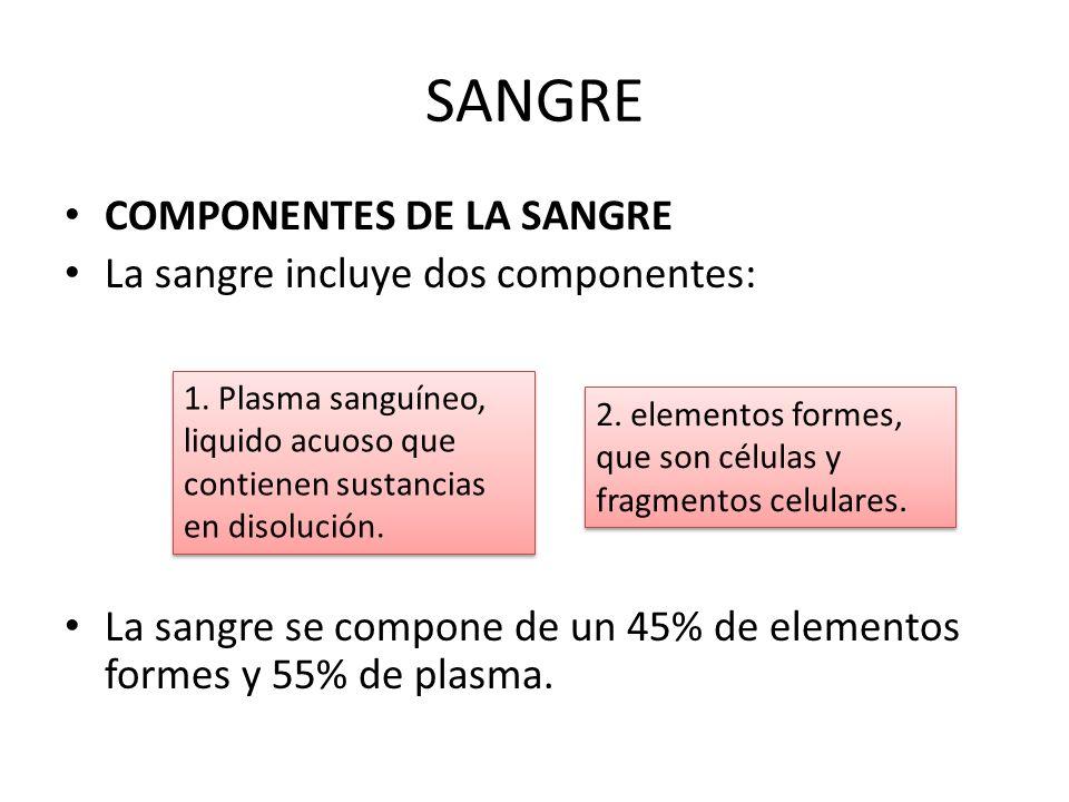 SANGRE COMPONENTES DE LA SANGRE La sangre incluye dos componentes: La sangre se compone de un 45% de elementos formes y 55% de plasma. 1. Plasma sangu