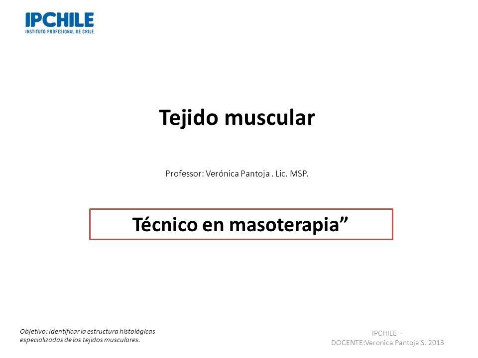 Tejido muscular Professor: Verónica Pantoja. Lic. MSP. Técnico en masoterapia IPCHILE - DOCENTE:Veronica Pantoja S. 2013 Objetivo: Identificar la estr