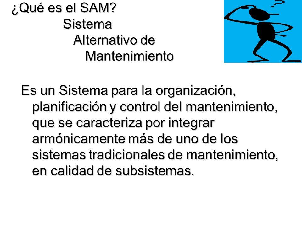 ¿Qué es el SAM.