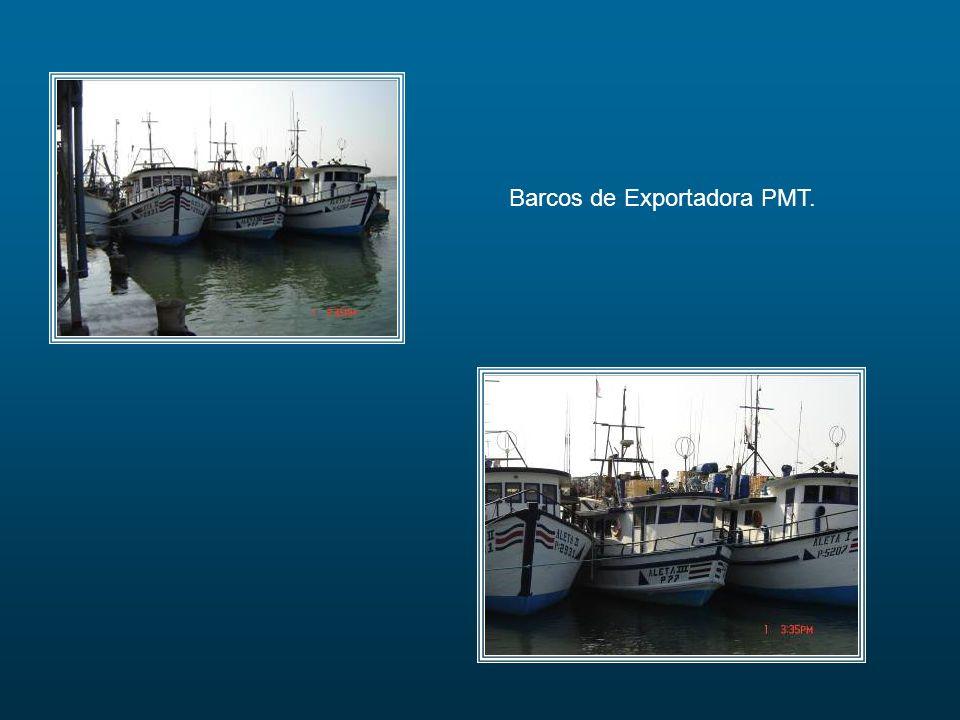Barcos de Exportadora PMT.