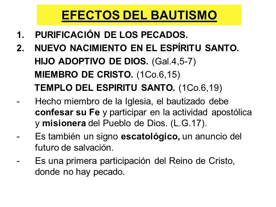 EFECTOS DEL BAUTISMO 1.PURIFICACIÓN DE LOS PECADOS. 2. NUEVO NACIMIENTO EN EL ESPÍRITU SANTO. HIJO ADOPTIVO DE DIOS. (Gal.4,5-7) MIEMBRO DE CRISTO. (1