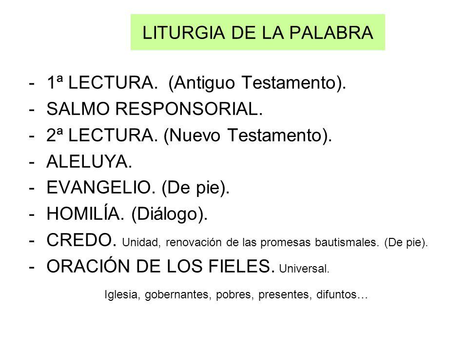 LITURGIA DE LA PALABRA -1ª LECTURA. (Antiguo Testamento). -SALMO RESPONSORIAL. -2ª LECTURA. (Nuevo Testamento). -ALELUYA. -EVANGELIO. (De pie). -HOMIL