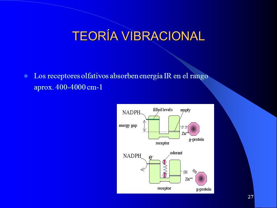 27 TEORÍA VIBRACIONAL Los receptores olfativos absorben energía IR en el rango aprox. 400-4000 cm-1