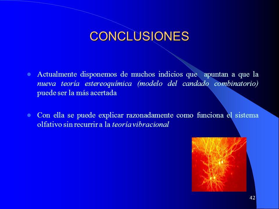 42 CONCLUSIONES Actualmente disponemos de muchos indicios que apuntan a que la nueva teoría estereoquímica (modelo del candado combinatorio) puede ser