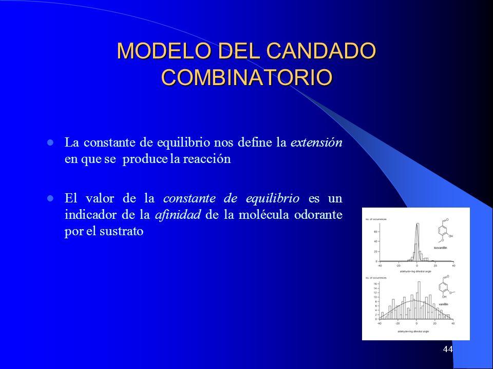 44 MODELO DEL CANDADO COMBINATORIO La constante de equilibrio nos define la extensión en que se produce la reacción El valor de la constante de equili