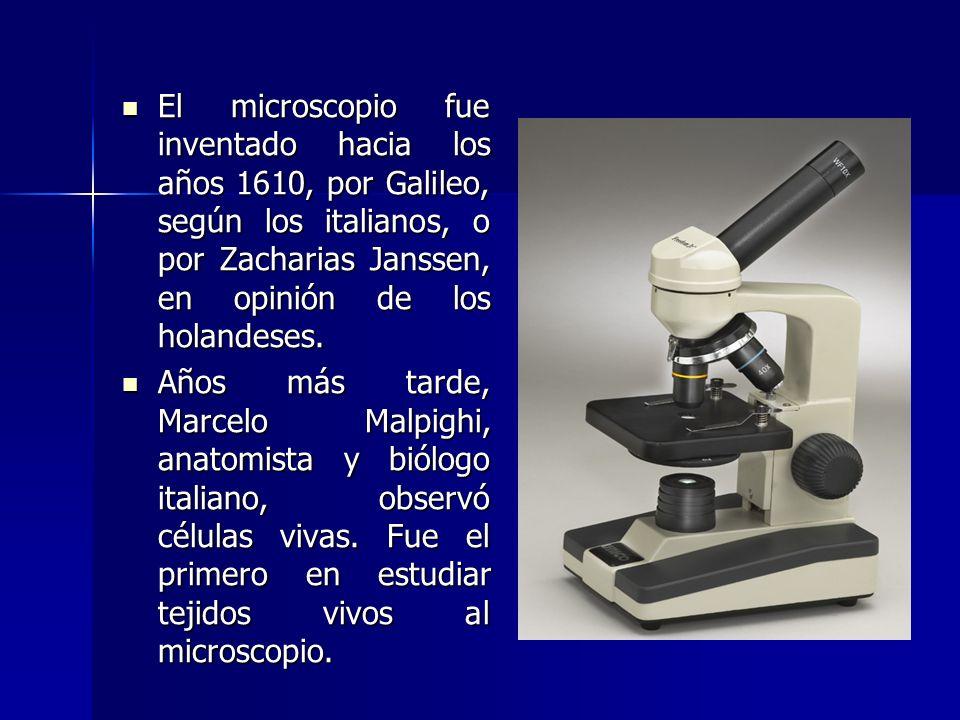 El microscopio fue inventado hacia los años 1610, por Galileo, según los italianos, o por Zacharias Janssen, en opinión de los holandeses. El microsco