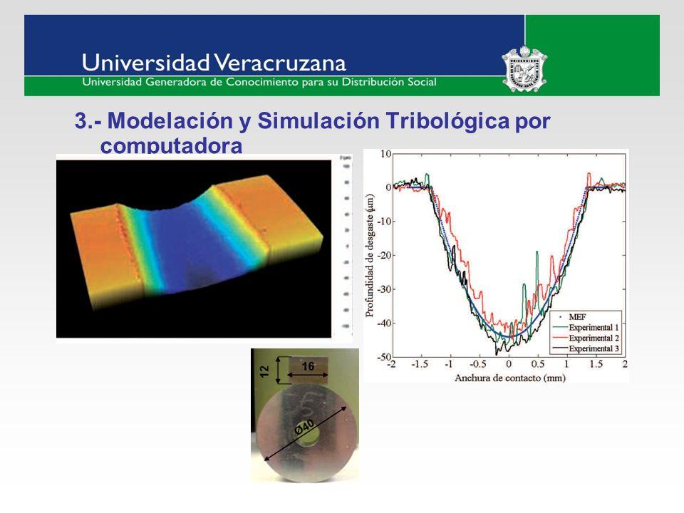 3.- Modelación y Simulación Tribológica por computadora