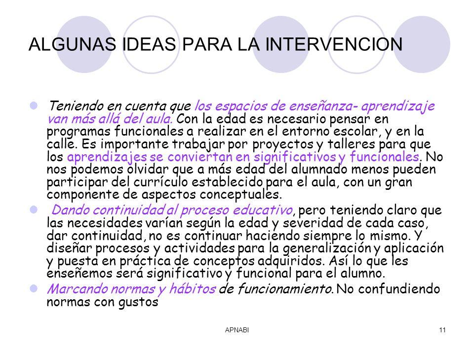 APNABI11 ALGUNAS IDEAS PARA LA INTERVENCION Teniendo en cuenta que los espacios de enseñanza- aprendizaje van más allá del aula.