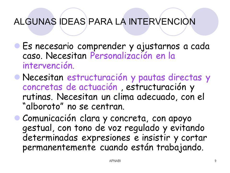 APNABI9 ALGUNAS IDEAS PARA LA INTERVENCION Es necesario comprender y ajustarnos a cada caso.