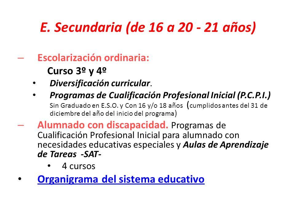 E. Secundaria (de 16 a 20 - 21 años) – Escolarización ordinaria: Curso 3º y 4º Diversificación curricular. Programas de Cualificación Profesional Inic