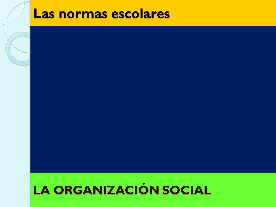 EQUIPOS DE EXPERTOS No Estables Heterogéneos u homogéneos LA ORGANIZACIÓN SOCIAL LA ORGANIZACIÓN SOCIAL La organización grupal