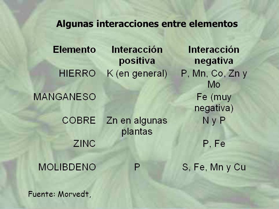 Algunas interacciones entre elementos Fuente: Morvedt,