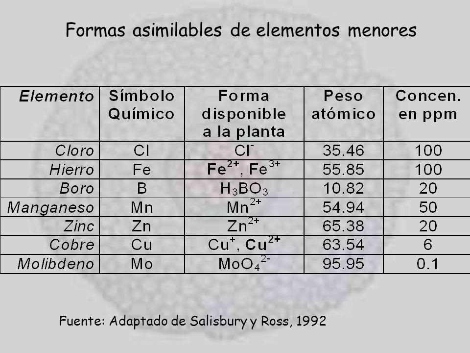 Formas asimilables de elementos menores Fuente: Adaptado de Salisbury y Ross, 1992