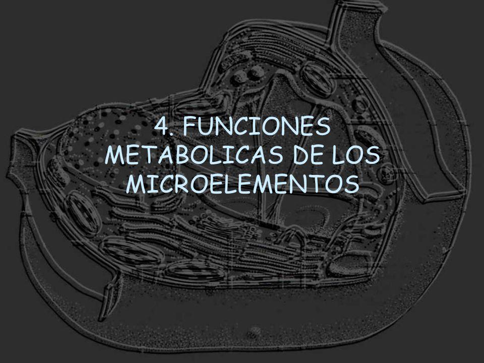 4. FUNCIONES METABOLICAS DE LOS MICROELEMENTOS