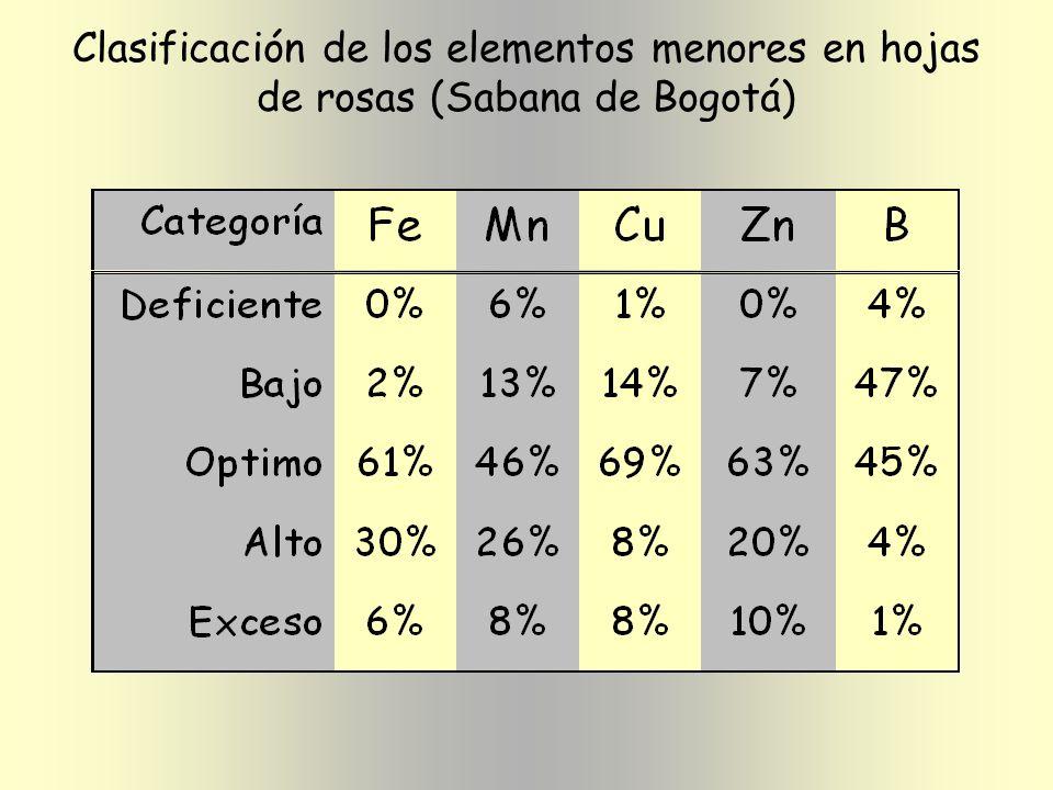Clasificación de los elementos menores en hojas de rosas (Sabana de Bogotá)