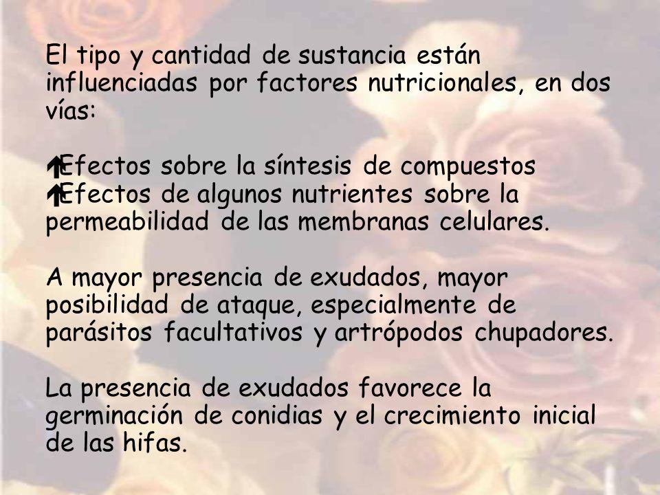 El tipo y cantidad de sustancia están influenciadas por factores nutricionales, en dos vías: éEfectos sobre la síntesis de compuestos éEfectos de algu
