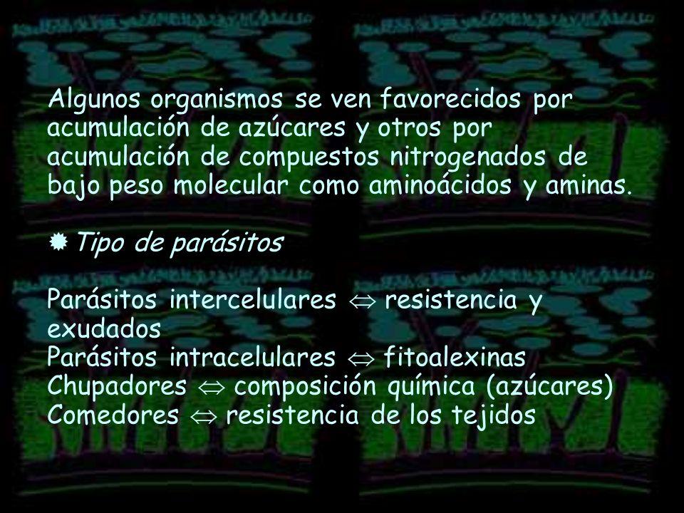 Efecto Invernadero Wikipedia Efecto Invernadero Wikipedia la Enciclopedia Libre el Efecto Invernadero