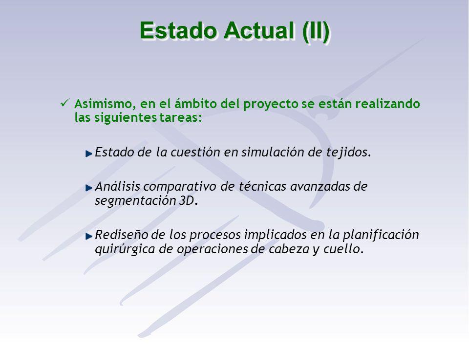 Estado Actual (II) Asimismo, en el ámbito del proyecto se están realizando las siguientes tareas: Estado de la cuestión en simulación de tejidos. Anál
