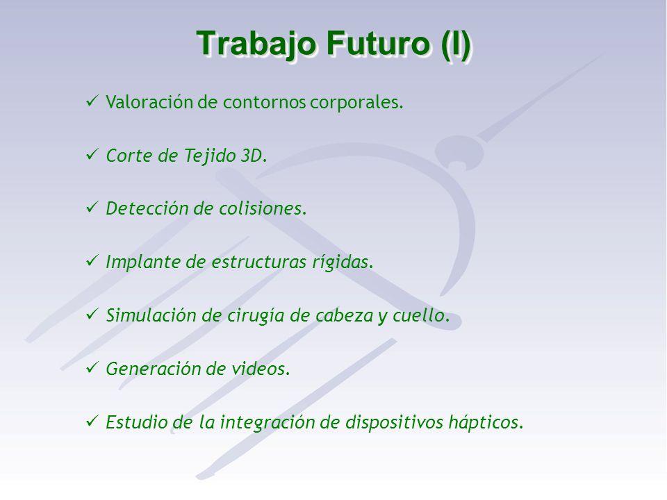 Trabajo Futuro (I) Valoración de contornos corporales. Corte de Tejido 3D. Detección de colisiones. Implante de estructuras rígidas. Simulación de cir