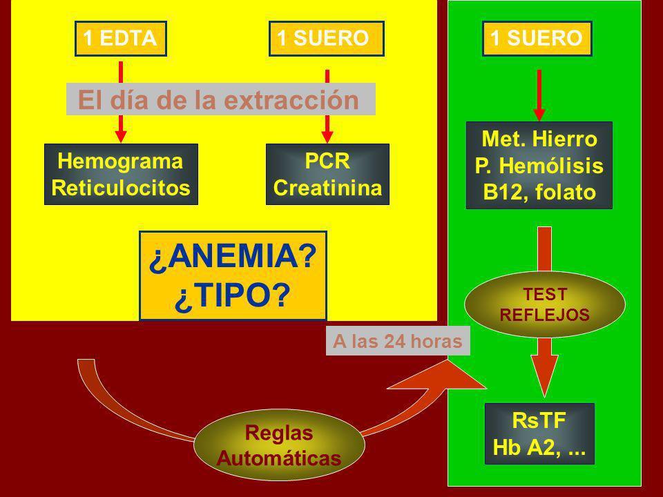A las 24 horas 1 EDTA1 SUERO Hemograma Reticulocitos PCR Creatinina El día de la extracción Met. Hierro P. Hemólisis B12, folato Reglas Automáticas Rs