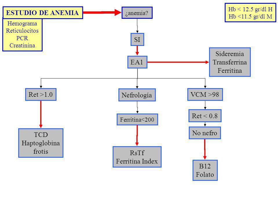 ¿anemia? SI EA1 Ret >1.0VCM >98 TCD Haptoglobina frotis B12 Folato Sideremia Transferrina Ferritina Nefrología RsTf Ferritina Index Ret < 0.8 Hemogram