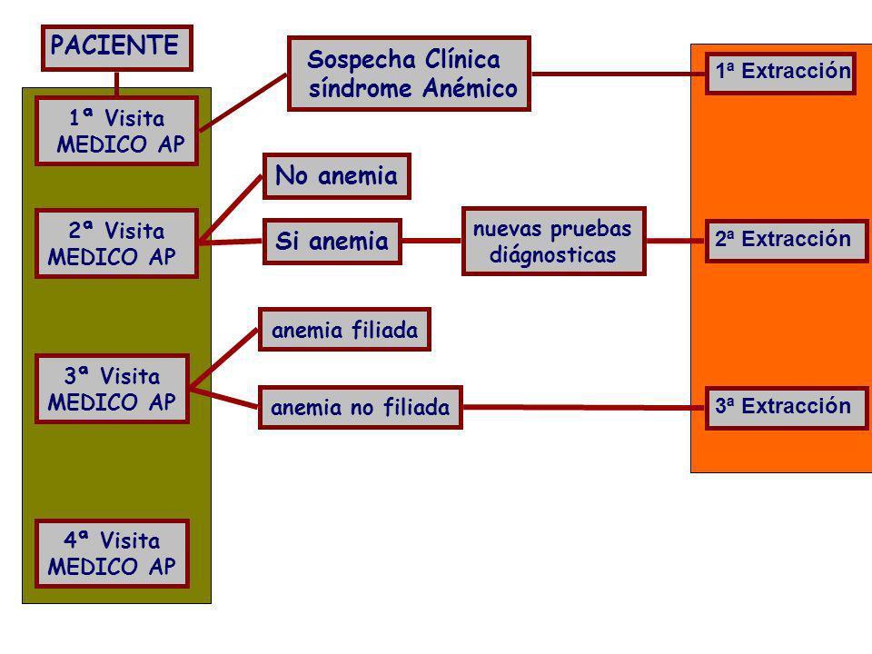 PACIENTE 1ª Visita MEDICO AP Sospecha Clínica síndrome Anémico 1ª Extracción anemia no filiada 3ª Visita MEDICO AP anemia filiada 3ª Extracción 4ª Vis
